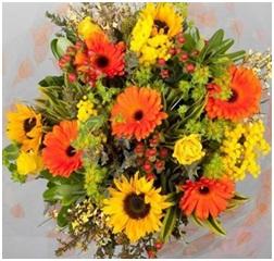 St Clements HT (Florist Choice)