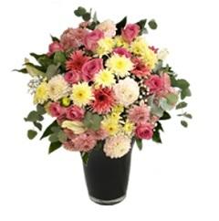 Mixed Florist Choice Aqua