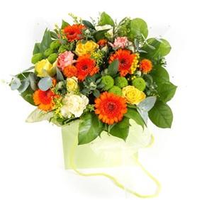 Bright Mix (Florist Choice, Seasonal)