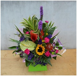 Extra Exotic Gift Box (Florist Choice)