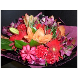Flameco (Florist Choice)