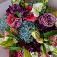 luxury mixed florist choice 40.00
