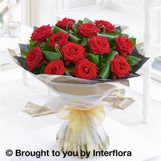 12 Luxury Long Stem Roses
