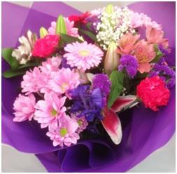 Seasonal Iris Mix (Florist Choice)