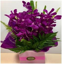 Box of Vanda Orchids