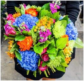 Florista BQ (Florist Choice)