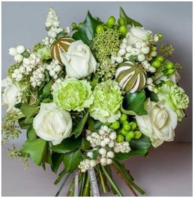 Frostylicious BQ (Florist Choice)