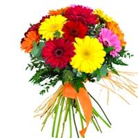 Bouquet of mixed gerberas