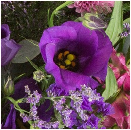 Traditional Bouquet (Seasonal, Florist Choice)