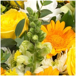 Mixed Basket (Seasonal, Florist Choice)