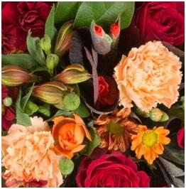 Vase Arrangement (Seasonal, Florist Choice)