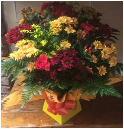 Mixed Aqua Box (Florist Choice)