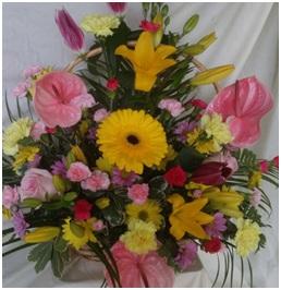 Basket Arrangement (Florist Choice)