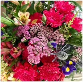 Seasonal Awakening (Florist Choice)