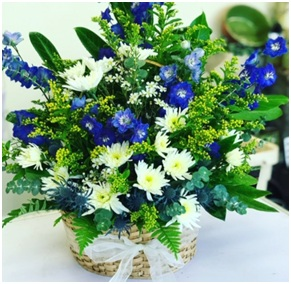 Royale Bleu (Florist Choice)