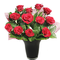 Red Roses Long Stemmed
